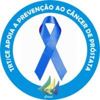 b_0_200_16777215_0_0_images_comunicacao_campanhas_2013_adesivo_novembro_azul.jpg