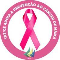 b_0_200_16777215_0_0_images_comunicacao_campanhas_2013_adesivo_outubro_rosa.jpg